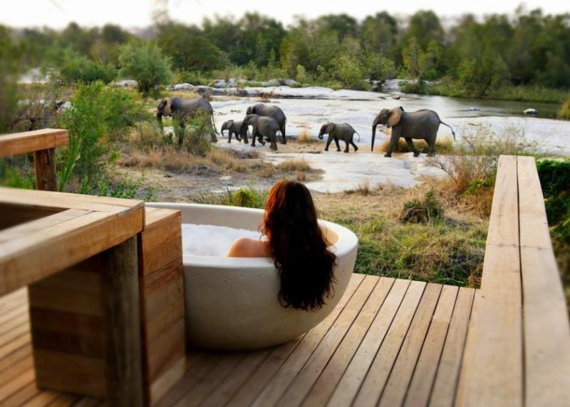 A female traveler taking a bath on a private patio while enjoying the view of a docile family of elephants as they stroll by.
